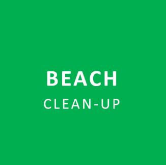 BEACH-cleanup2